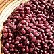 Rancho Gordo Hidatsa Red Heirloom Beans 16oz. , Napa Valley