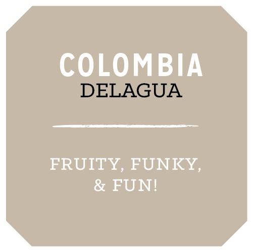 "Rose Park Coffee Roasters ""Colombia Delagua"" Whole Bean Coffee 12.oz. Bag - Long Beach"
