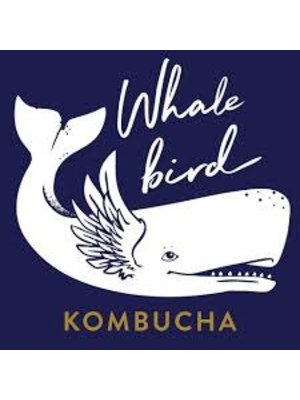 "Whalebird ""Light My Fire"" Hard Kombucha w/ Ginger, Lime & Lion's Mane 16oz. can - San Luis Obispo, CA"