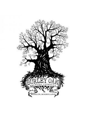 "Burley Oak ""Jream-Blueberry Lemon Cheesecake"" fruited sour 16oz can-Berlin, Maryland"