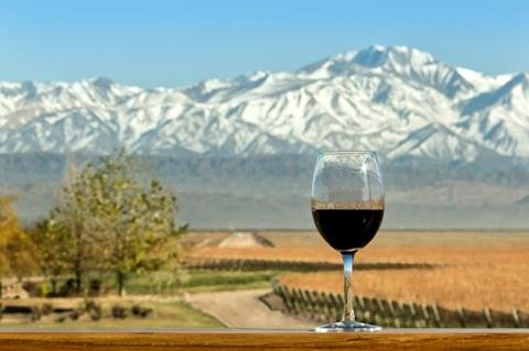 South American Red Wines:  Bold Balanced & Exuberant