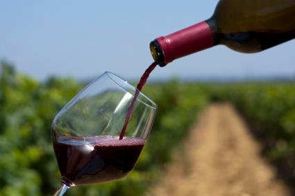 The Wines of Baja:  Discovering Surprising Quality