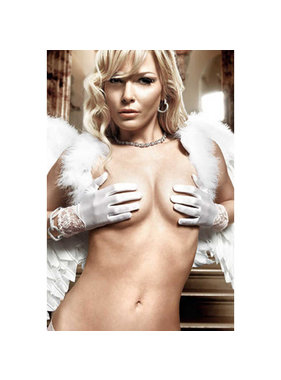Baci Lingerie Baci White Wrist Length Satin & Lace Gloves (One Size)
