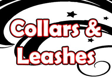 Collars & Leashes