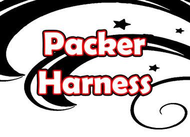 Packer Harness