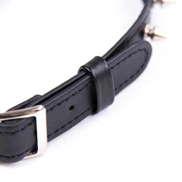 Premium Products Spiked Black Leather Collar