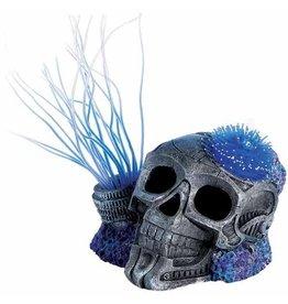 Aquaria (D) Sea Flower Sci-Fi Skull Small Urchin Blue