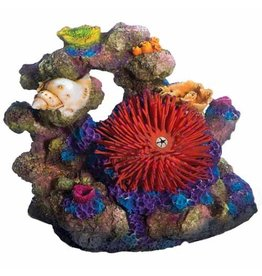 Aquaria (D) Sea Flower Coral Rock Large Urchin Red