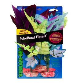 Aquaria (W) ColorBurst Forals® Flowering Broad Leaf & Sword Cluster