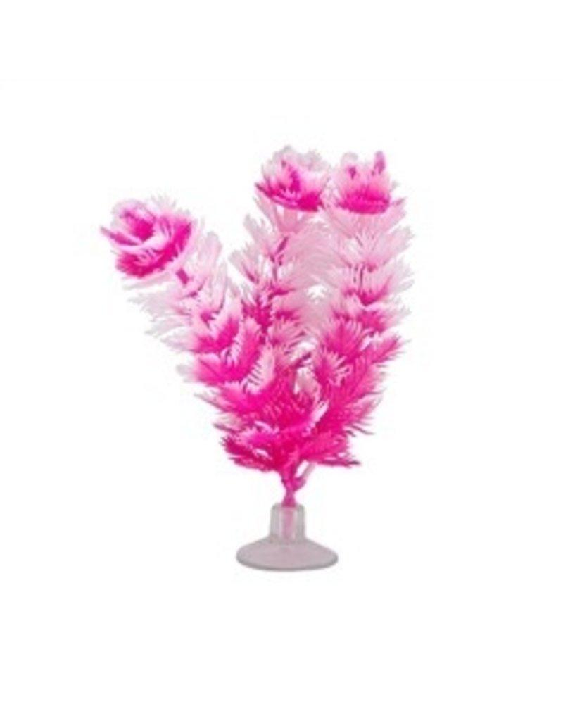 Aquaria MA Betta Kit Vibrascaper- Foxtail