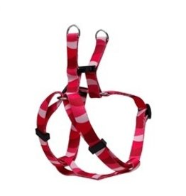 Dog & cat (D) Step in harness S wild stripe