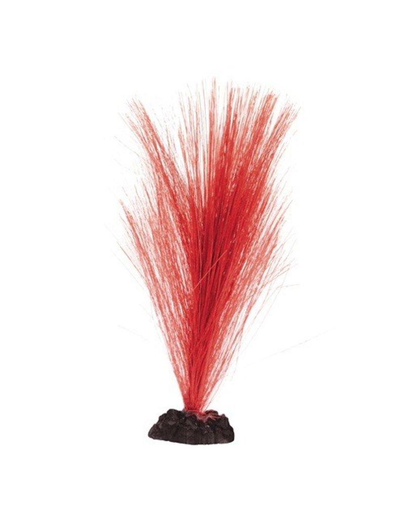 Aquaria UT HAIRGRASS 8 IN RED