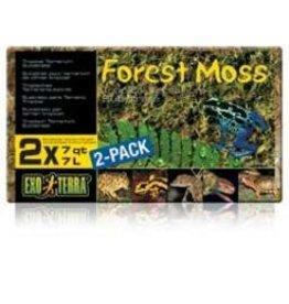 Reptiles Exo Terra Forest Plume Moss, 500g-V