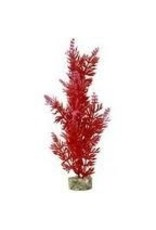 Aquaria (D) GARDEN CLUSTER BUSH PLANT LG RED