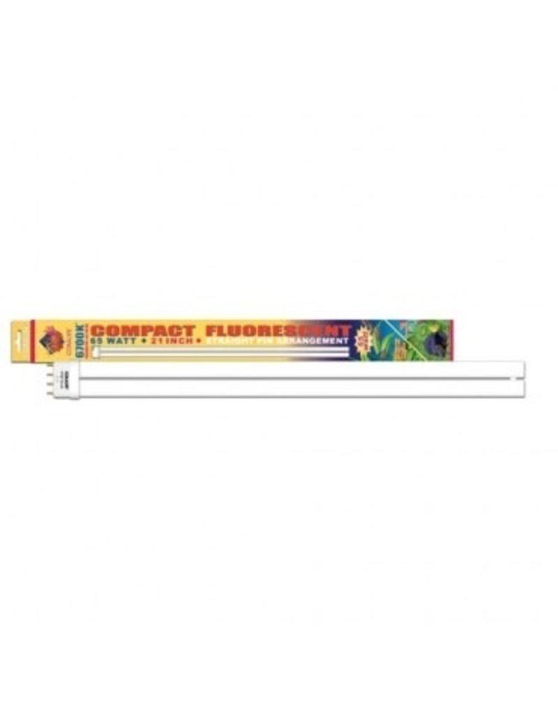 "Aquaria (W) 6,700K Compact Fluorescent Lamp - Straight Pin - 65 W - 21"""