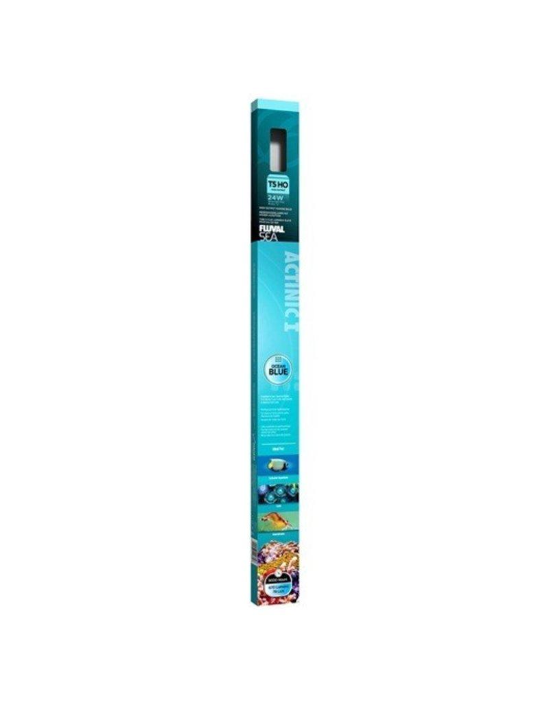 Aquaria (P) Fluval Sea T5 HO Actinic Aquarium Bulb - 24 W