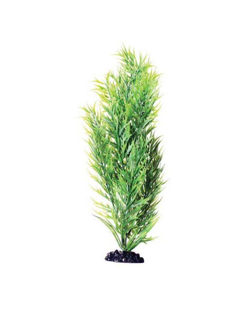 Aquaria UT PP GREEN BAMBOO 16IN