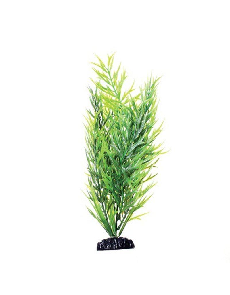 Aquaria (W) UT PP GREEN BAMBOO 12IN