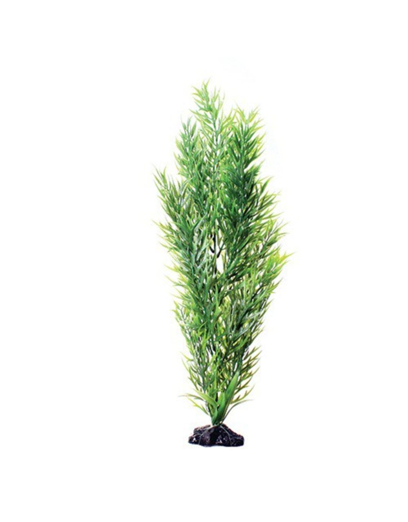 Aquaria (W) UT PP GREEN BAMBOO 20IN