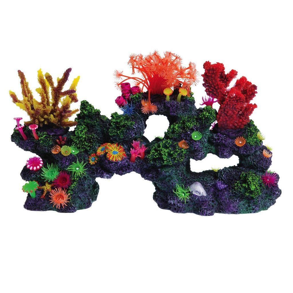 Aquaria (D) UT FLORIDA CORAL REEF