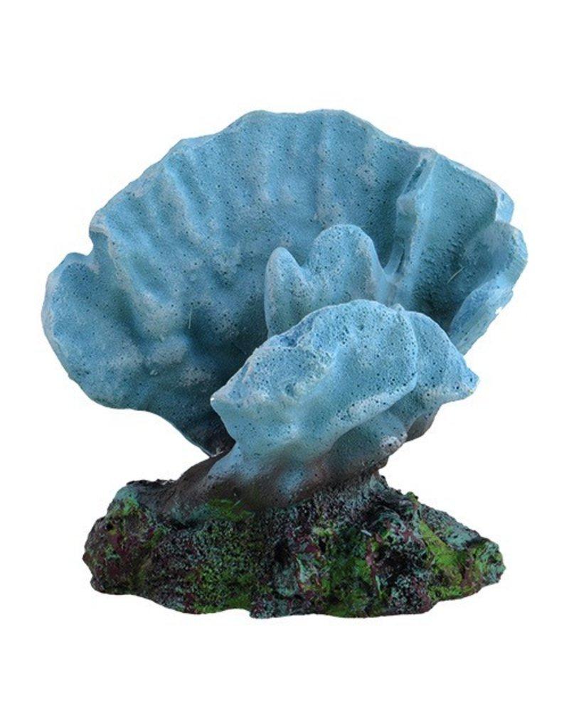 Aquaria UT ACRO CORAL BLUE SM