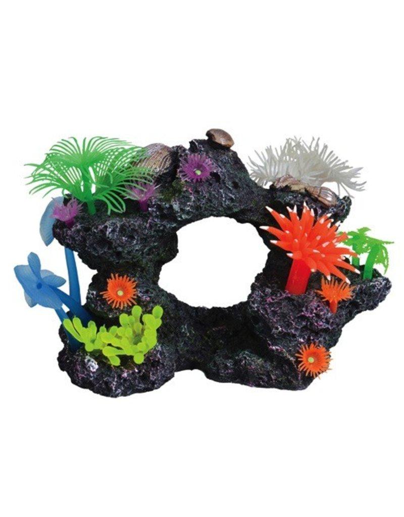 Aquaria (W) UT REEF SCENE SMALL D