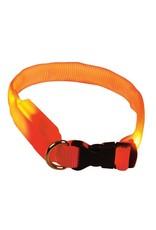 Dog & cat (D) Clip n' Glow LED Collar - Orange - Small