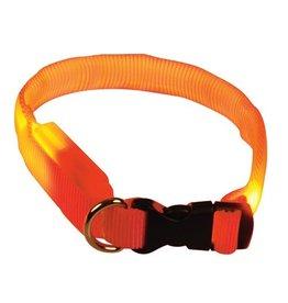Dog & cat (D) Clip n' Glow LED Collar - Orange - Medium