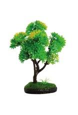 Aquaria (W) Underwater Treasures Bonsai Trees