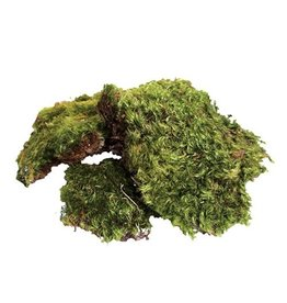 Reptiles Zoo Med All Natural Frog Moss - 80 Cubic Inches