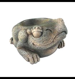 Reptiles Exo Terra Aztec Frog Water Dish