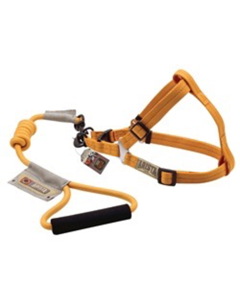 Dog & cat (D) Arista Round Harness & Leash Set - Medium - Orange