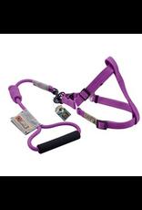 Dog & cat (D) Arista Round Harness & Leash Set - Large - Purple