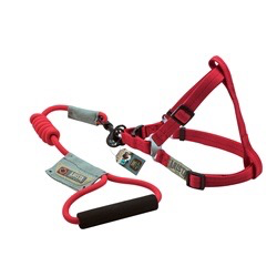 Dog & cat (D) Arista Round Harness & Leash Set - Large - Red