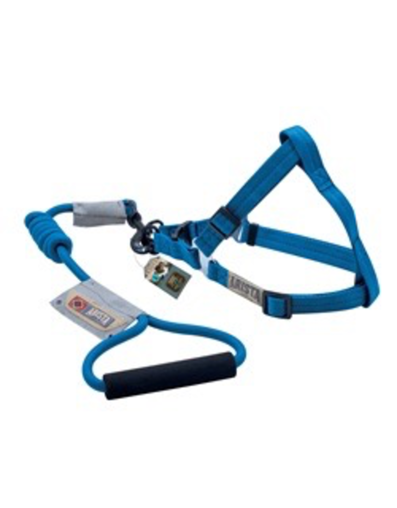 Dog & cat (D) Arista Round Harness & Leash Set - Large - Deep Blue