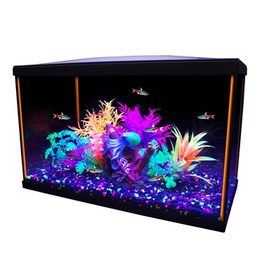 Aquaria Marina iGlo 10G Aquarium Kit, 10 gal