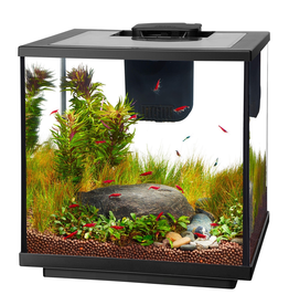 Aquaria (W) Aqueon  LED Shrimp Aquarium Kit - 7.5 gal