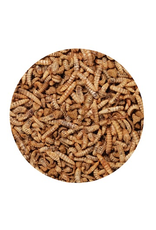 Small Animal Living World Green Gourmet Toppers - Insects - 125 g (4.4 oz)
