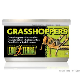 Reptiles Exo Terra Canned Grasshoppers - 34 g (1.2 oz)