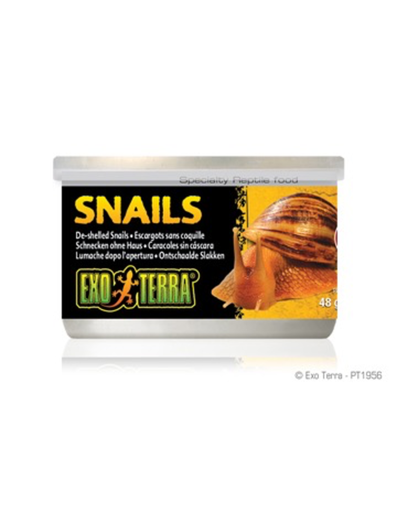 Reptiles Exo Terra Canned Snails (House free) - 48 g (1.7 oz)