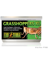 Reptiles (W) Exo Terra Canned Grasshoppers - XL - 34 g (1.2 oz)