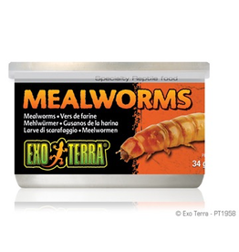 Reptiles Exo Terra Canned Mealworms - 34 g (1.2 oz)