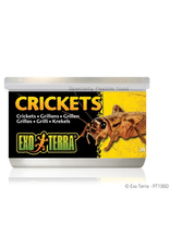 Small Animal Exo Terra Canned Crickets - 34 g (1.2 oz)