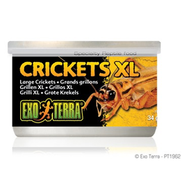 Reptiles (W) Exo Terra Canned Crickets, Large, 34 G(1.2oz)-V