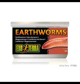Reptiles Exo Terra Canned Earthworms - 34 g (1.2 oz)