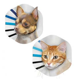 Dog & cat KONG EZ Clear Collar Small