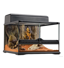 Reptiles Exo Terra Wide Terrarium - Small - 18in x 18in x 18in