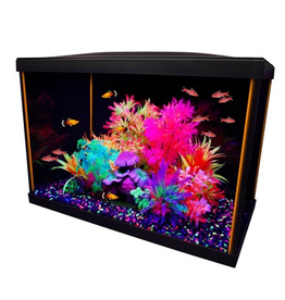 Aquaria Marina iGlo 20 Aquarium Kit - 75 L (20 US gal.)