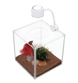 Aquaria (W) Marina Cubus Glass Betta Kit, 3.4L-V