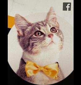 Dog & cat Catit Bow Tie Collar - Gold